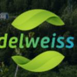 Edelweiss5 — динамичное развитие компании + 30000$ в команде