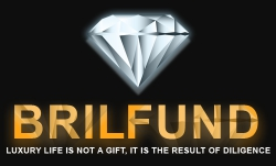 BrilFund — обзор отзывы динамичная новинка brilfund.com (бонус 2,5%)
