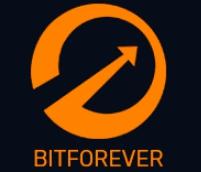 BitForever